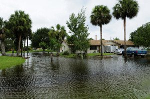 National vs Private Flood Insurance Programs – Your Options